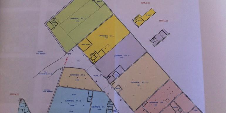 g-capannoni-pianta-2012-02-27